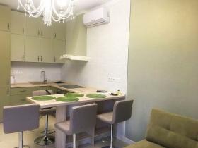 Дом на Осипова, новая 1к квартира-(№1-664)